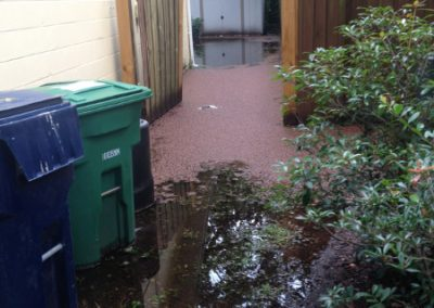 1 Storm Damage - flooded side yard