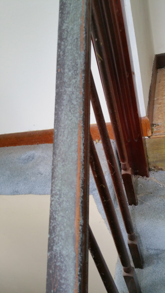 10 mold on staircase handrail