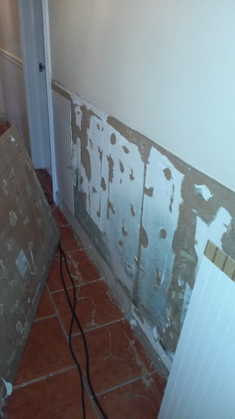 12 Wainscoat removal to check for mold growth