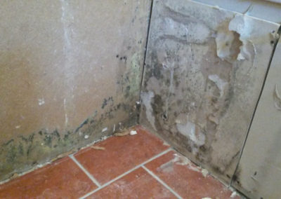 19 mold growth behind vanity