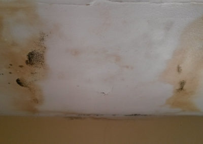 3 Water staining on ceiling