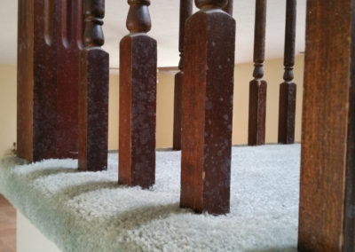5 - mold growth on stair rails
