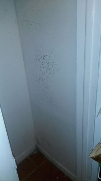 6 Mold growth on wall in closet