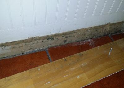 7 mold behind baseboard