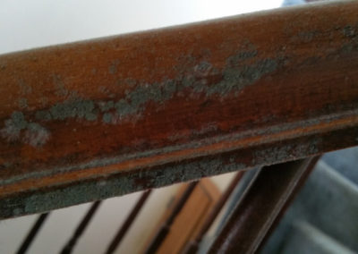 8 Mold growth on stair railing