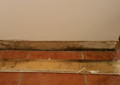 8 mold on baseboard and wall
