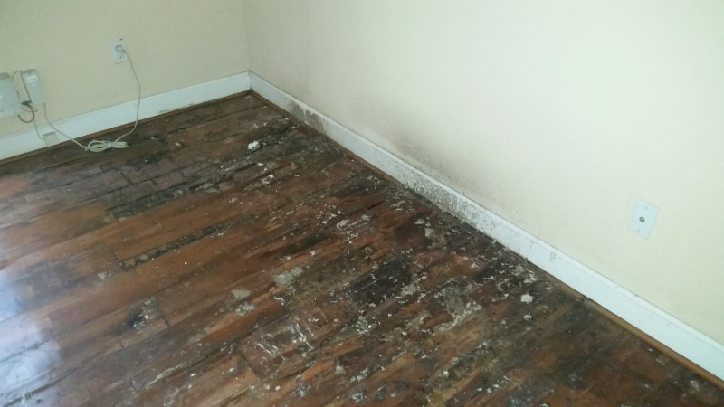8 Roof Leak Water Caused Heavy Damage To Wood Flooring Advantage