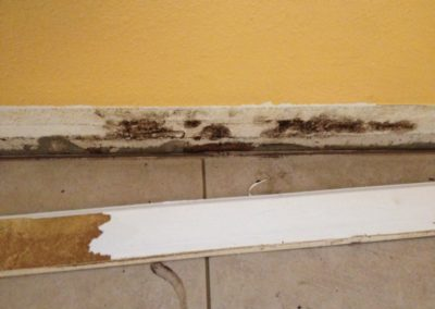 9 Storm Damage - microbial growth behind baseboard