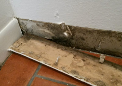 9 microbial growth on baseboard
