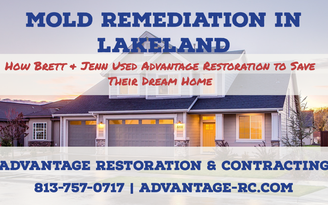 Mold Remediation in Lakeland