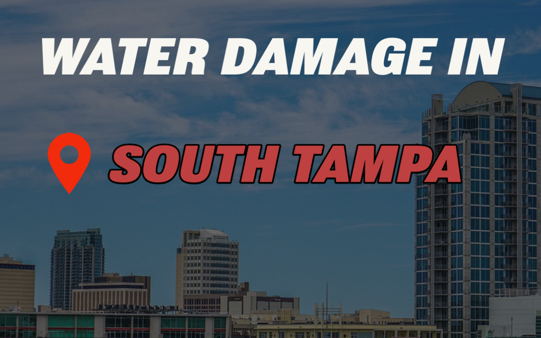 Water Damage in South Tampa